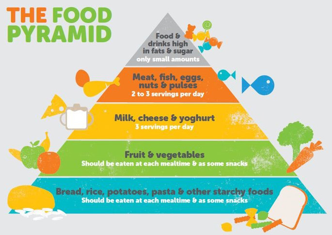 Food Pyramid Meals for kids